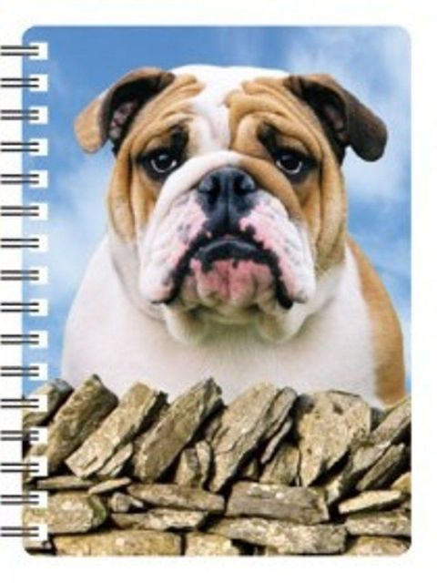Bulldog 3D Notebook